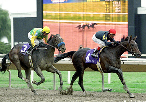 Storm Flag Flying Breeders Cup Juvenile Fillies Victory And Its Impact On My Life