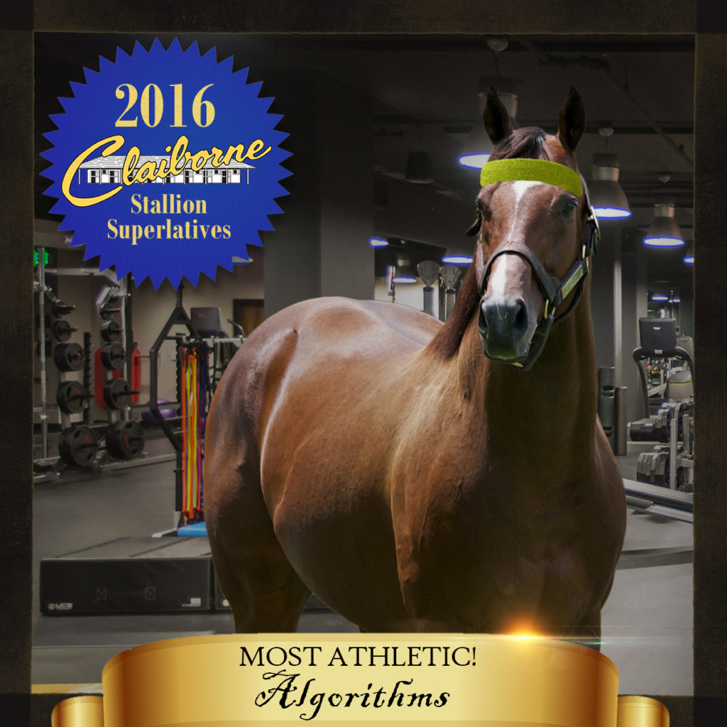 2016-05-27_Stallion_Superlatives_Algorithms