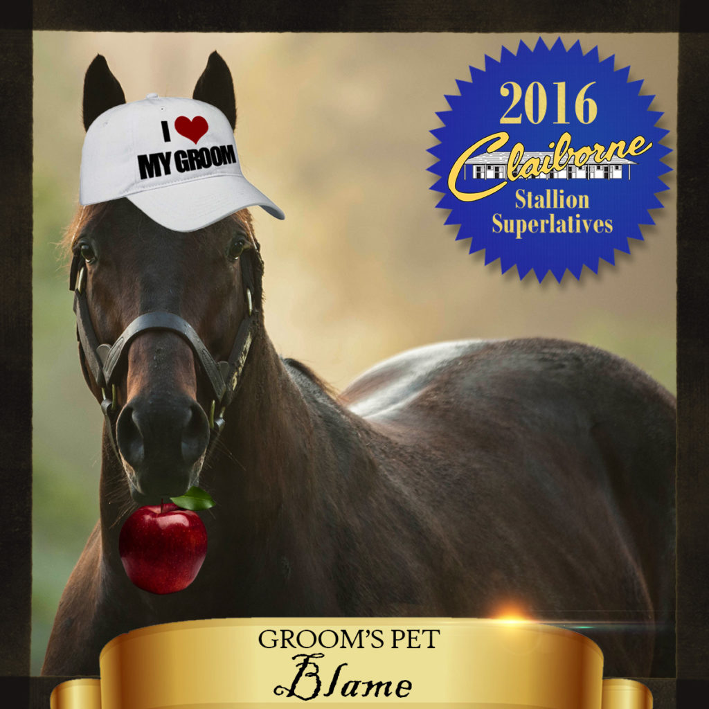 2016-05-27_Stallion_Superlatives_Blame