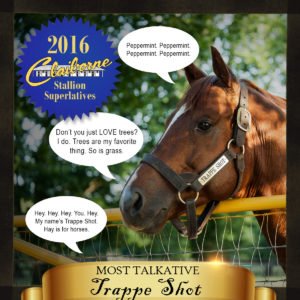2016-05-27_Stallion_Superlatives_Trappe_Shot