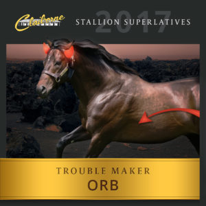 2017_CLA-StallionSuperlatives-Orb